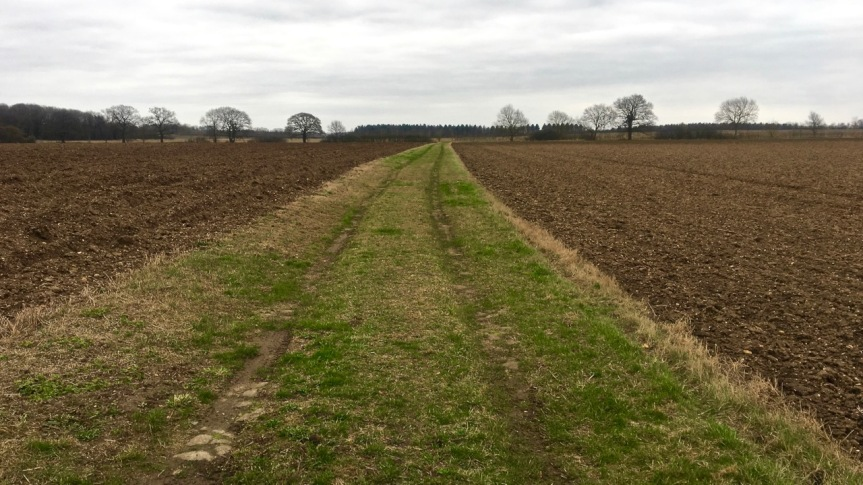 wide track across ploughed fields