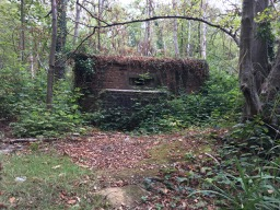 military pill box in the woods